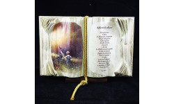 BOOKS OF LOVE-AFFETTO DI ALLIEVO