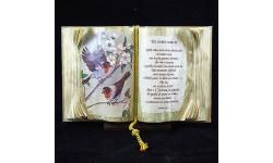 BOOKS OF LOVE-UN AMICO COME TE